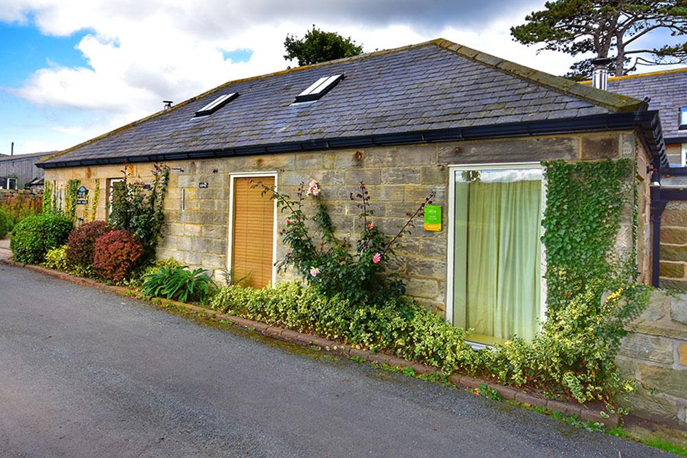 Catkin Cottage Exterior